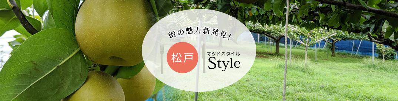 松戸style